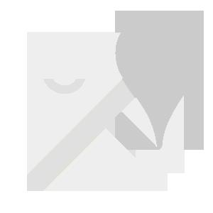 GooglemapWhite