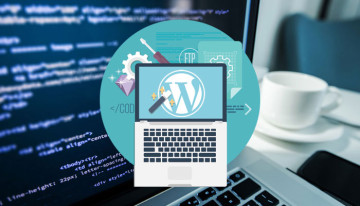 best_practices_in_wordPress_development