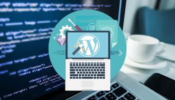 best_practices_in_wordPress_development
